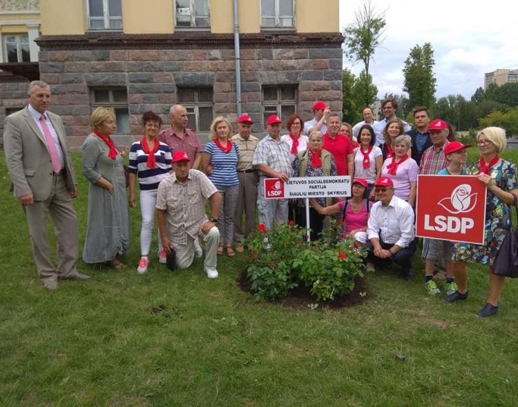 Chaimo Frenkelio vilos parke – ir socialdemokratų rožės