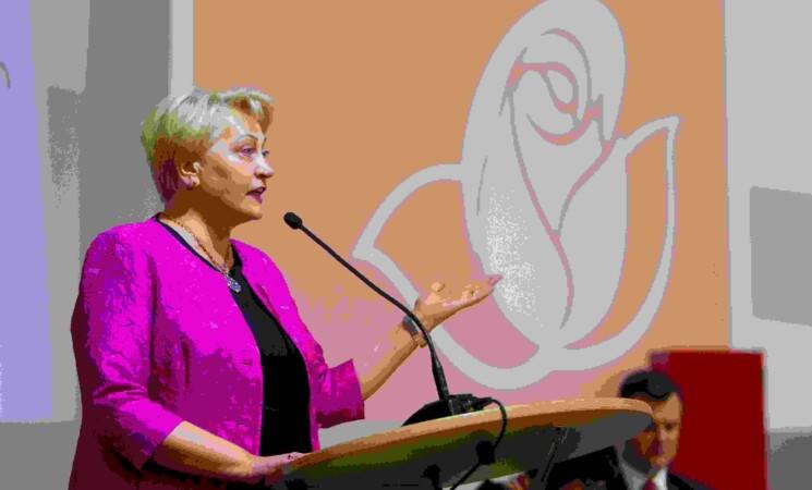 R. Budbergytė: R. Karbauskio pasiteisinimai – be pagrindo