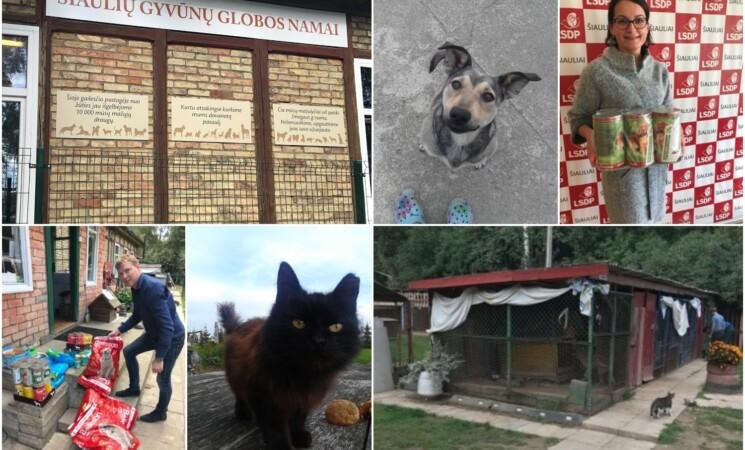 DuokLabas Šiaulių gyvūnų globos namų augintiniams