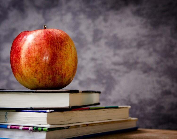 Švietimo privatizavimas ir elitizmas – neigiamos pasekmės ir kaip jų išvengti