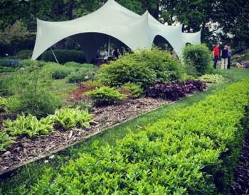 Žolinių dienos minėjimas Botanikos sode